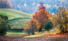 Jesień na Kaszubach